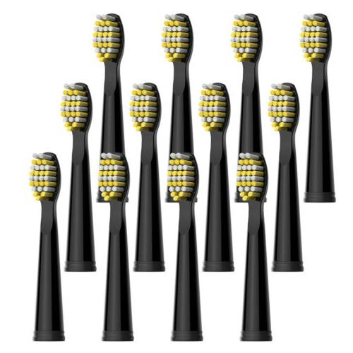 replacement heads x 12 firm bristles